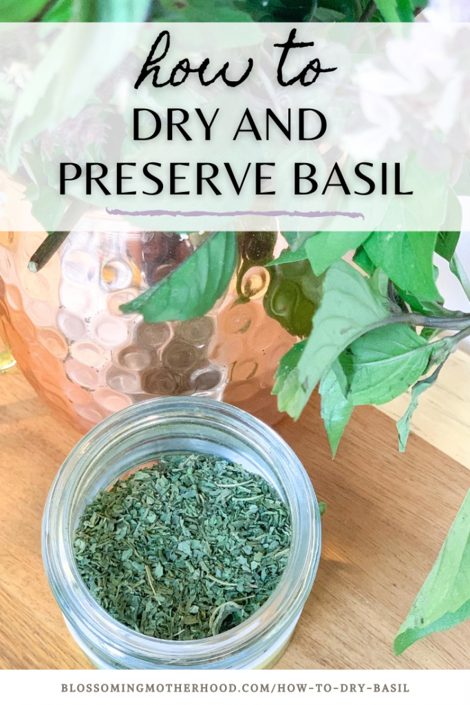 Drying and preserving basil is simple to do. This post will show you step by step how to dry and preserve basil using a dehydrator or oven.