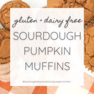 Gluten free pumpkin sourdough muffin recipe makes moist, cake like muffins full of fall flavor. This recipe is entirely gluten and dairy free. Gluten free recipes for kids. Dairy free recipes for kids.
